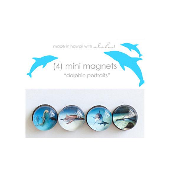 Dolphin Portraits